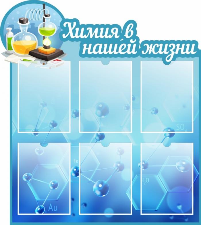 Химия в нашей жизни (Ш_17)